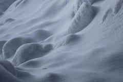 Schneeszene Lizenzfreie Stockfotografie