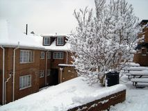 Schneeszene Stockfotografie