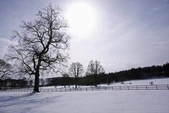 Schneeszene in Aberdeenshire lizenzfreies stockbild