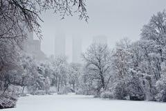 Schneeszene in Central Park lizenzfreie stockbilder