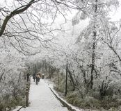 Schneeszene im Emei Shan, Porzellan Lizenzfreie Stockfotos