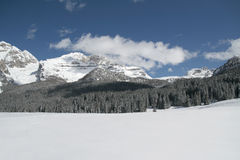 Schneeszenenpanorama Stockfoto