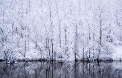 Schneetag Stockbild