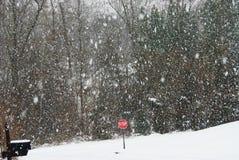 Schneetag Lizenzfreie Stockfotografie