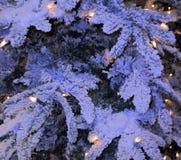 Schneetannenzweige mit gelben Lampen Stockfotografie