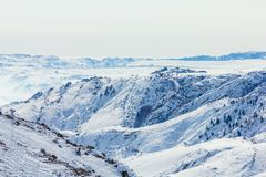 Schneewald im Winter Der schneebedeckte Gongnaisi-Wald im Winter stockfotografie