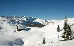 Schneeweiß Stockfoto