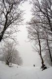 Schneewinter-Nebelweg alleine Stockbild