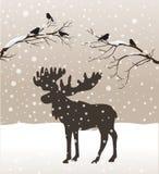 Schneewinter-Waldlandschaft mit Elchen und Vögeln Stockbilder