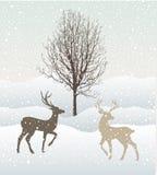 Schneewinterlandschaft mit zwei Rotwild und Baum Stockfotografie
