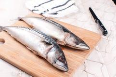 Schneidebrett mit roher Makrele und Messer Lizenzfreies Stockfoto