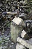 Schneiden Sie Brennholz Stockfoto