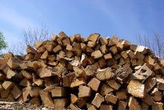 Schneiden Sie Brennholz Lizenzfreies Stockfoto