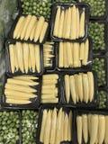 Schneiden Sie frisch das Gemüse, das für das Kochen vorbereitet wird Stockfotografie