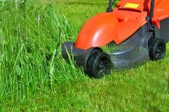 Schneiden Sie frisch Rasen Stockbild