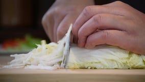 Schneiden Sie Frischgemüse schnell stock video footage