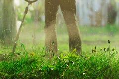 Schneiden Sie Gras mit Rasenmäher, Haus, Villige-Land-Natur-Landwirtschafts-Grün-Arbeitskraft; Löwenzahn; Selektiver Fokus Stockfotos
