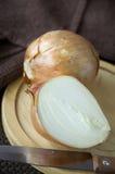 Schneiden Sie Hälfte der Zwiebel Stockbild