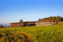Schneiden Sie Holzlagerung lizenzfreies stockfoto