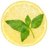 Schneiden Sie nahes hohes der Zitrone Stockfotos