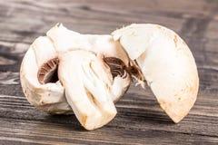Schneiden Sie Pilz Lizenzfreies Stockfoto