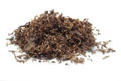 Schneiden Sie Tabak Stockbilder