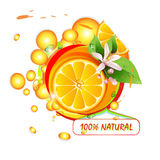 Schneidet Orange mit Blumen stock abbildung