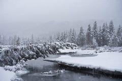 Schneien in Alaska Lizenzfreie Stockfotografie