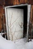 Schneien-im Eingang zu einem Gebäude Lizenzfreie Stockfotos