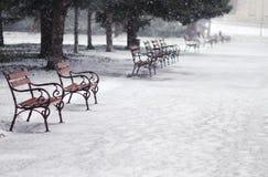Schneien im Park Stockbild