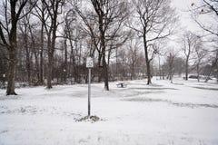 Schneien im Park Stockfoto