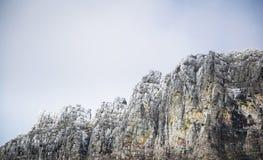 Schneien Sie auf die Oberseite des Berges am Glacier Nationalpark lizenzfreie stockfotografie