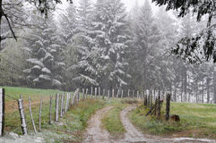 Schneiende Landschaft mit Straße, Wiese, Zaun und Bäumen mit Schnee Lizenzfreies Stockbild