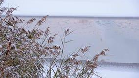 Schneit schöne gefrorenes Eis See des Winters Landschaft und die Reflexion auf dem Wasser stock video footage