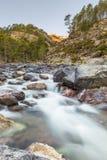 Schnell fließender Asco-Fluss in Korsika Stockbild