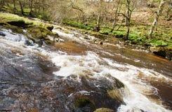 Schnell fließender Fluss Stockbild