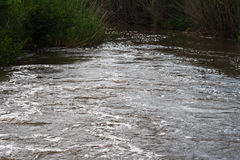 Schnell fließender Fluss lizenzfreies stockbild