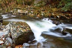 Schnell fließender Fluss im Wald Stockfotografie
