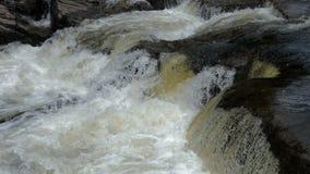 Schnell fließendes Wasser im Gebirgsfluß stock footage