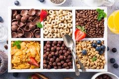 Schnelle Frühstückskost aus Getreide Lizenzfreie Stockbilder