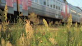 Schneller Betrieb des Personenzugs zum Sonnenuntergang stock video