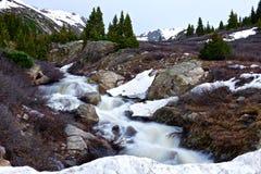Schneller Gebirgsbach, der durch Alpenwiesen läuft Lizenzfreies Stockbild