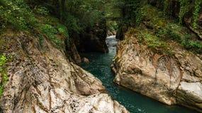 Schneller Gebirgsfluss, der die Schlucht durchfließt Abchasien georgia lizenzfreie stockbilder