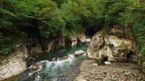 Schneller Gebirgsfluss, der die Schlucht durchflie?t Abchasien georgia lizenzfreies stockbild