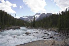Schneller mistaya Fluss lizenzfreie stockfotografie