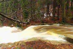 Schneller Strom Gebirgsfluss voll des kalten Quellwassers Große Steine des Pantoffels und schäumendes kühles Wasser herum Geräusc Lizenzfreies Stockfoto