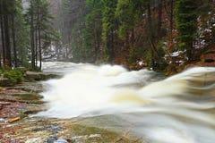 Schneller Strom Gebirgsfluss voll des kalten Quellwassers Große Steine des Pantoffels und schäumendes kühles Wasser herum Geräusc Stockfotografie