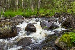 Schneller Waldfluß Lizenzfreies Stockbild