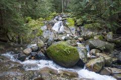 schnelles Stromwasser Lizenzfreie Stockfotografie