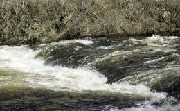 Schnelles Wasser lizenzfreie stockbilder